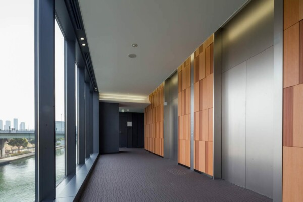 FW-1268 | fine wood,sustainia,wallcoverings | Sustainia